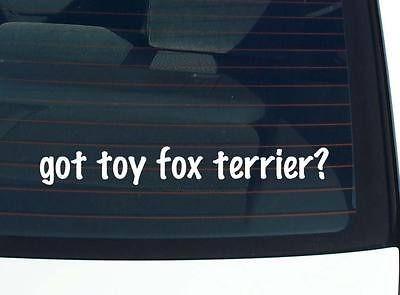 got toy fox terrier? DOG BREED DOGS FUNNY DECAL STICKER VINYL WALL CAR