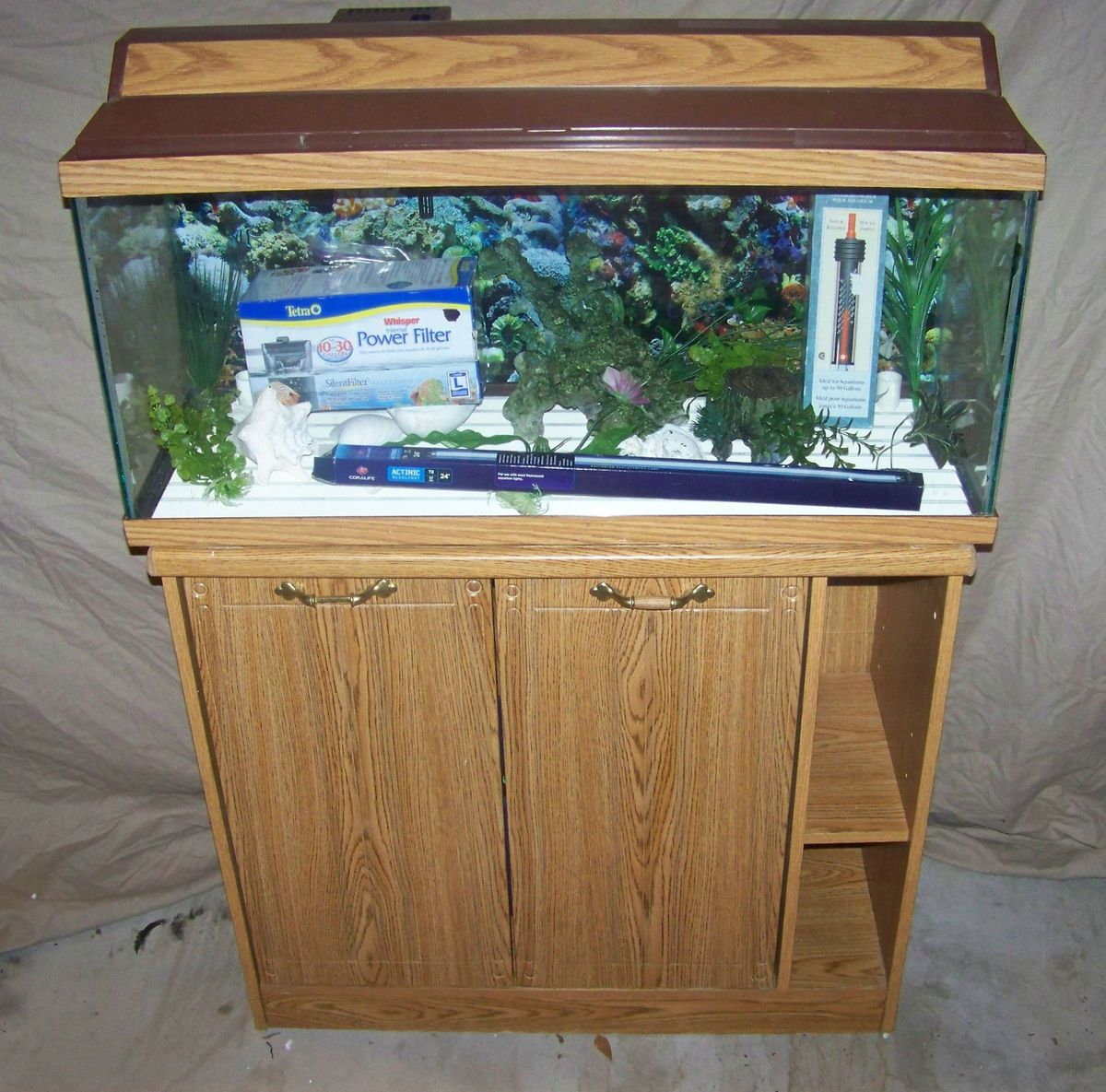 Fish tank decorations 30 gallon 30 gal 2017 fish tank Thirty gallon fish tank
